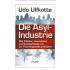 Udo Ulfkotte : De Asyl Industrie
